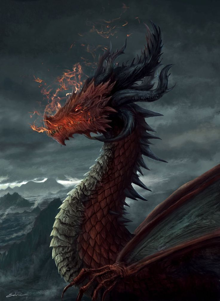 fire-dragon-dragon-art.jpg